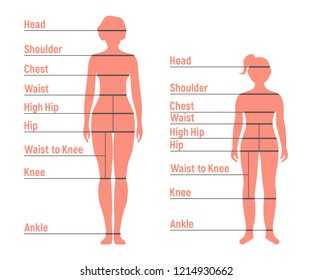 Woman and Girl Size Chart. Human front side Silhouette. Isolated on White Background. Vector illustration.