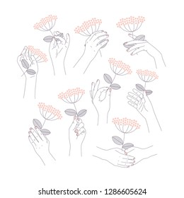 Woman hand set holding a beautiful flower. Feminine illustration. Vector illustration