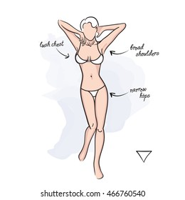 Woman inverted triangle body shape.Vector illustration of girl's figure. Woman in bathing suit.