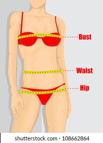 Woman measurement chart