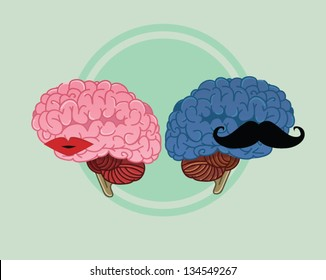woman and men brains