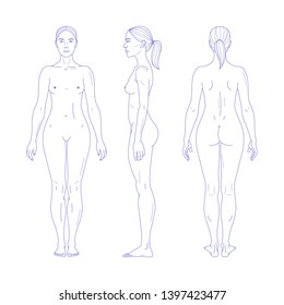 Woman naked full length figure silhouette in realistic linear style. Front, back and side views. Vector illustration isolated on white background.