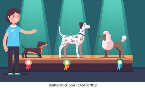 Woman presenting dogs on winner pedestal with award ribbons at dog show. Dachshund, poodle & Dalmatian competition dog champions on podium under spotlights. Canine exhibition. Flat vector illustration