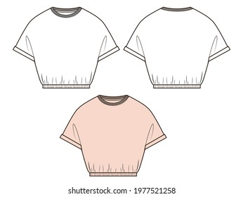 Woman t shirt in vector graphic.Volume crop magyar short sleeve t shirt with cuffs and elastic tape on waiste line.Fashion isolated  illustration template.Scheme front and back views.
