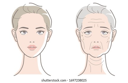 Woman's face at different ages. Young and elderly image of skin aging. Vector illustration isolated on white background.