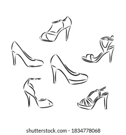 Woman's shoe, vector sketch, women's Shoe, vector sketch illustration