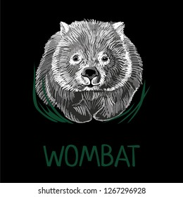 Wombat illustration  on isolated black background.  Scalable design. Print for t-shirt or any other surfase.