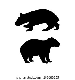 Wombat vector icons and silhouettes. Set of illustrations in different poses.