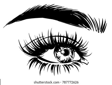 women eye with perfect eyebrow and lashes. fashion sketch