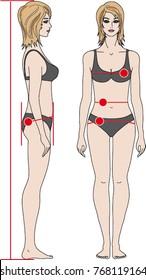 women figure bikini lingerie clothes fashion textile model measurement clothing sizes bust waist height