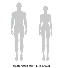 Women and men to do biceps measurement fashion Illustration for size chart. 7.5 head size girl and boy for site or online shop. Human body infographic template for clothes.
