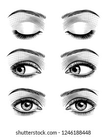 Women's eyes with perfect eyebrowes and full lashes. Vintage engraving stylized drawing. Vector illustration