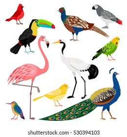 Wonderful set consisting of nice colored birds