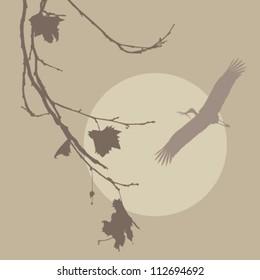 Wood Stork building the nest