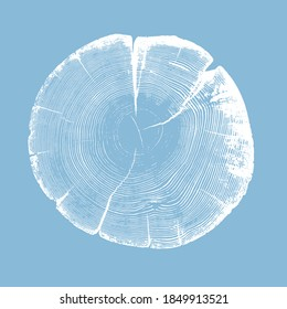 Wood tree art texture stamp for card or background. Detailed tree ring design. Rough organic tree rings with close up of end grain.