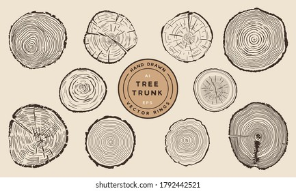 Wood Tree Trunk Rings - Hand Drawn Vector Set