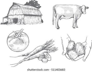 Woodcut Farm Illustrations