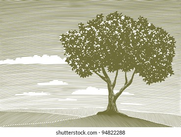 Woodcut style illustration of a country landscape with a tree in the foreground.