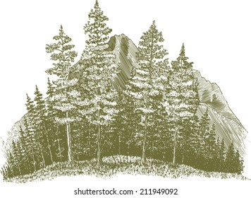 Woodcut-style illustration of a wilderness forest scene with a mountain in the background.
