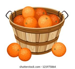 Wooden basket with oranges. Vector illustration.