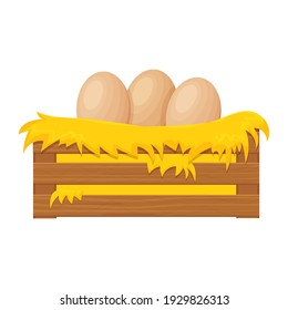 Wooden box, bale of hay, haystack with eggs in cartoon style isolated on white background. Han nest, farming clipart. Rural, textured and detailed breeding object.