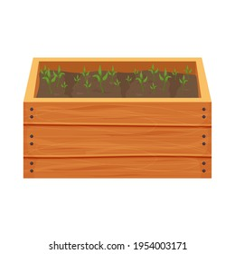 Wooden box, crate with soil, ground and greenery sprouts, seedling in cartoon style isolated on white background. Greenhouse, spring, agriculture concept.