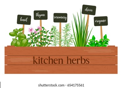 Wooden crate of farm fresh cooking herbs with labels in wooden box. Greenery basil, rosemary, chives, thyme, oregano with text. Horticulture. houseplants. Gardening. For advertising, poster, banner