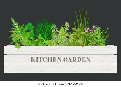 Wooden crate of farm fresh cooking herbs in wooden box on dark. Greenery basil, rosemary, chives, thyme, oregano with text. Horticulture. houseplants. Kitchen Garden. For advertising, poster, banner
