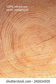 wooden cut texture, natural eco vector background