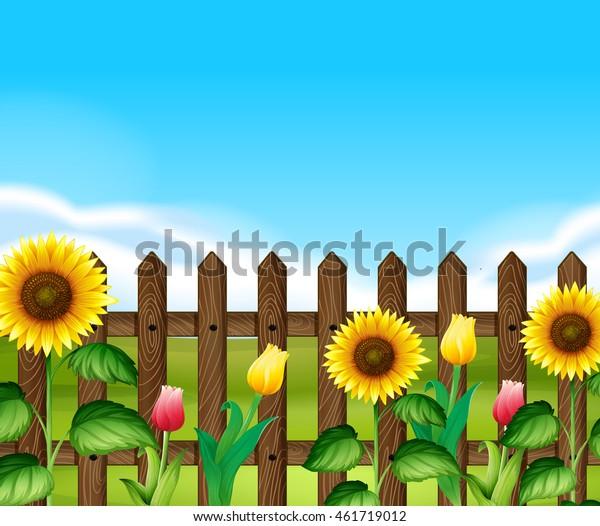 Wooden Fence Flowers Garden Illustration Stock Vektorgrafik