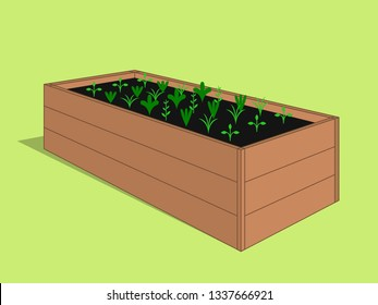 Wooden raised garden bed with young sprouting plants. Vector hand drawn illustration eps10.