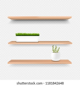 Wooden Shelf And Pot Isolated Transparent Background With Gradient Mesh, Vector Illustration
