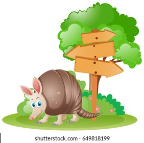 Wooden signs with armadillo underneath illustration