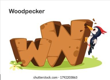 Wooden textured bold font alphabet W, W for Woodpecker