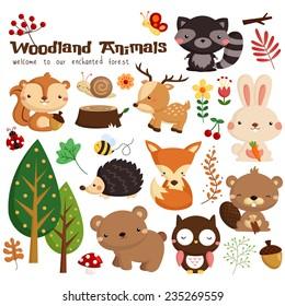 Woodland Animal Vector Set