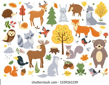Woodland animals set. Cute fox, bear, wolf, rabbit and birds. Perfect for scrapbooking, cards, poster, tag, sticker kit. Hand drawn vector illustration.