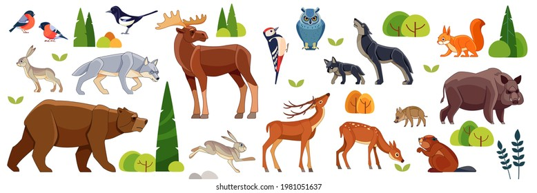 Woodland forest animals birds collection including deer, bear, owl, wild boar, fox, wolf, moose, deer, hare, squirrel, woodpecker, beaver, titmouse, magpie. Cartoon flat vector illustration.
