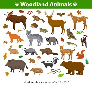 Woodland forest animals birds collection including deer, bear, owl, wild boar, lynx, squirrel, woodpecker, badger, beaver, skunk, hedgehog. Autumn fall leaves and plants