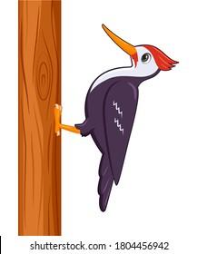 Woodpecker-Vogel auf weißem Hintergrund. Cartoon-Stil, Vektorgrafik