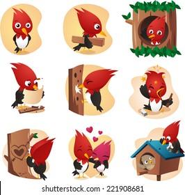 woodpecker cardinal set cartoon illustrations