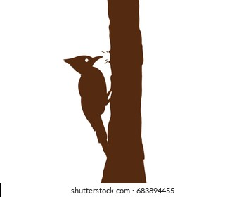woodpecker vector drawing
