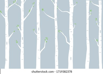 woods of birch trees with green leaves illustration