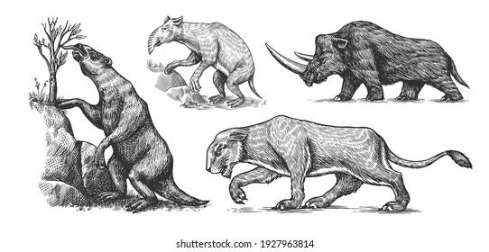 Woolly rhinoceros Cave lion. Ground sloth, Megatheriidae. Palorchestes or Marsupials of the family Palorchestidae. Vintage Extinct animal. Retro Mammals. Hand drawn engraved sketch.