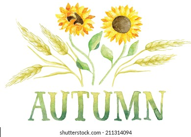 Word AUTUMN painted with green and yellow watercolor with five ears of wheat and two sunflowers. Vectorized watercolor painting.