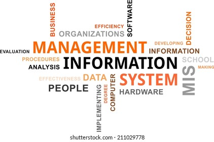 A word cloud of management information system related items
