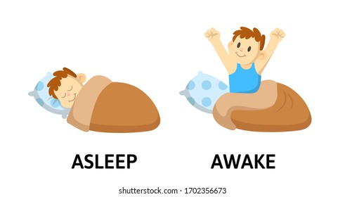 Words asleep and awake textcard with cartoon characters. Opposite adjectives explanation card. Flat vector illustration, isolated on white background.