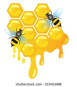 Worker bees on honey cells with honey dripping vector
