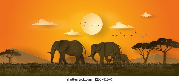 World elephant Day ,family of elephant in the grass with sunset , Paper art 3d  from digital craft style.