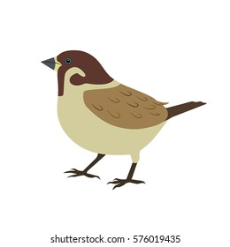 World Sparrow Day. Vector illustration of the date of sparrows. Cute sparrow card for world sparrow day.