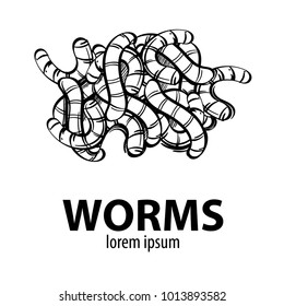 Worms. Outline vector illustration isolated on white background.